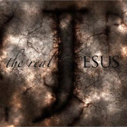 The Real Jesus (John 19:31-42)